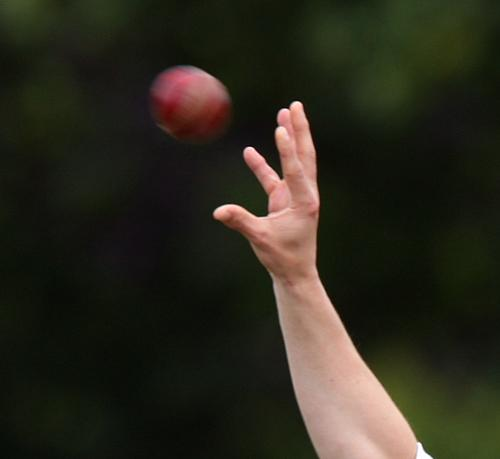 Cricket opening weekend round up