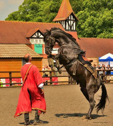Daniel Naprous from The Devil's Horsemen performs with the Lloyds TSB black stallion Dante