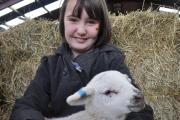 Families invited to enjoy lambing experience