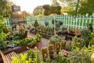 High security as 'world's most poisonous garden' opens at the Horniman