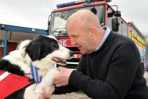 Crewe Guardian: Animal OBE for Cheshire search and rescue dog Bryn. Click here to read more