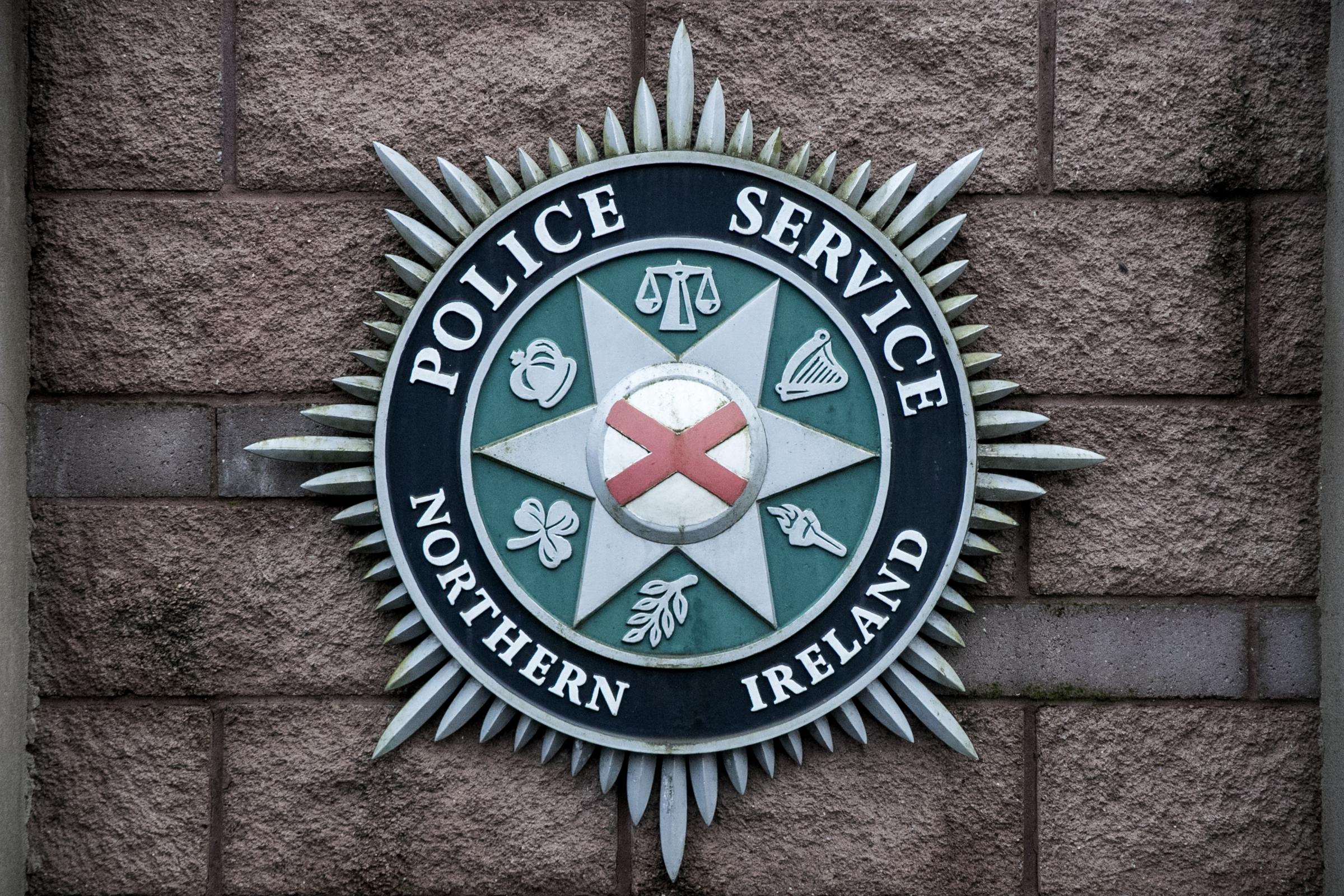 The PSNI said more than 31,000 domestic violence incidents were recorded last year